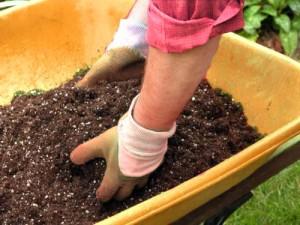 fertilizer recipe