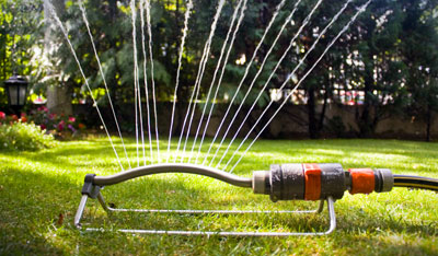Watering Your Garden Properly
